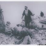 ニシン漁 (4)